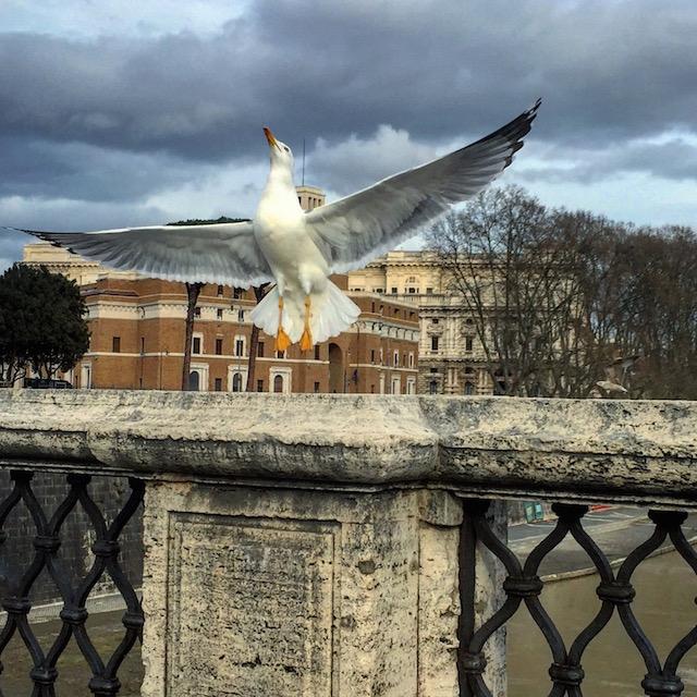 Рим за 3 дня, что посмотреть в Риме, Рим маршруты прогулок, что посмотреть в Риме, Тибр, замок святого ангела рим