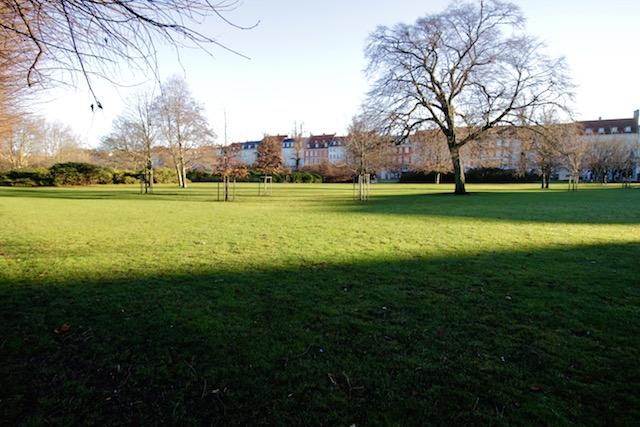 на фото аллея в королевском парке в Копенгагене