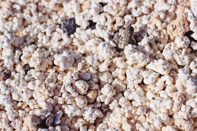 Пляж с песком как попкорн на Фуэртевентура