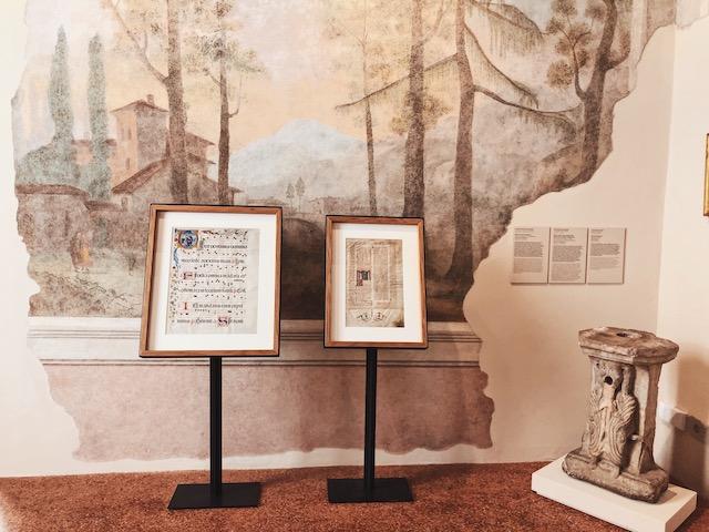Дом-музей Палаццо Маффей в Вероне