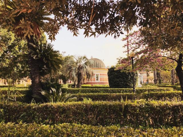 Ботанический сад в Палермо