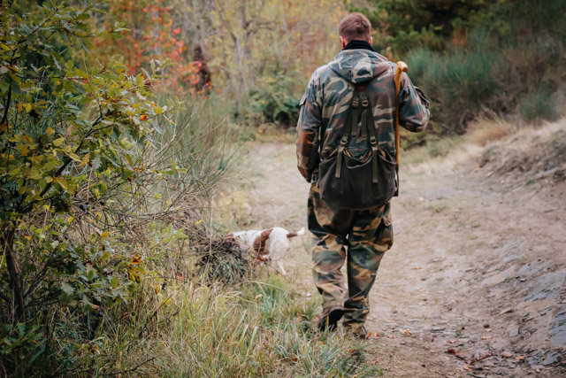Охотник во время охоты на белый трюфель